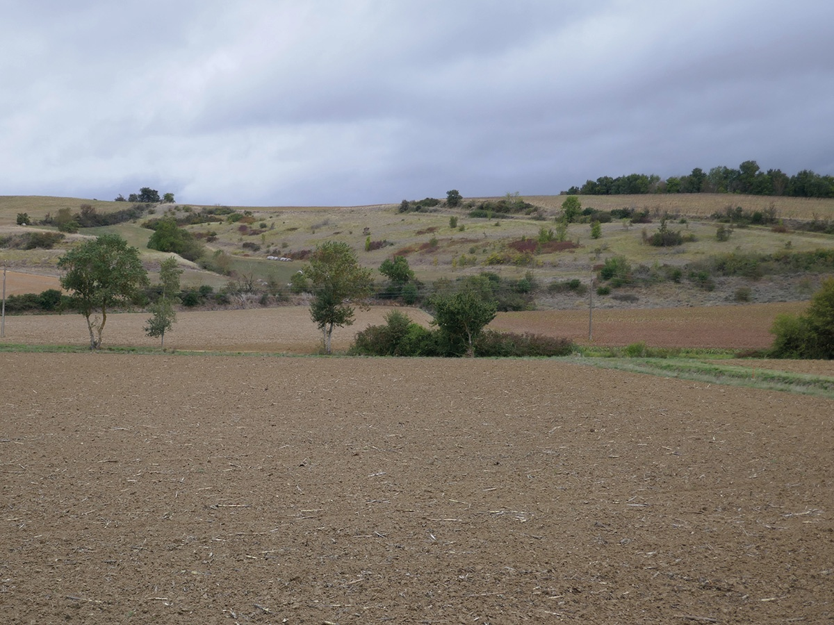Aires agricoles des coteaux du Lauragais, Avignonet-Lauragais