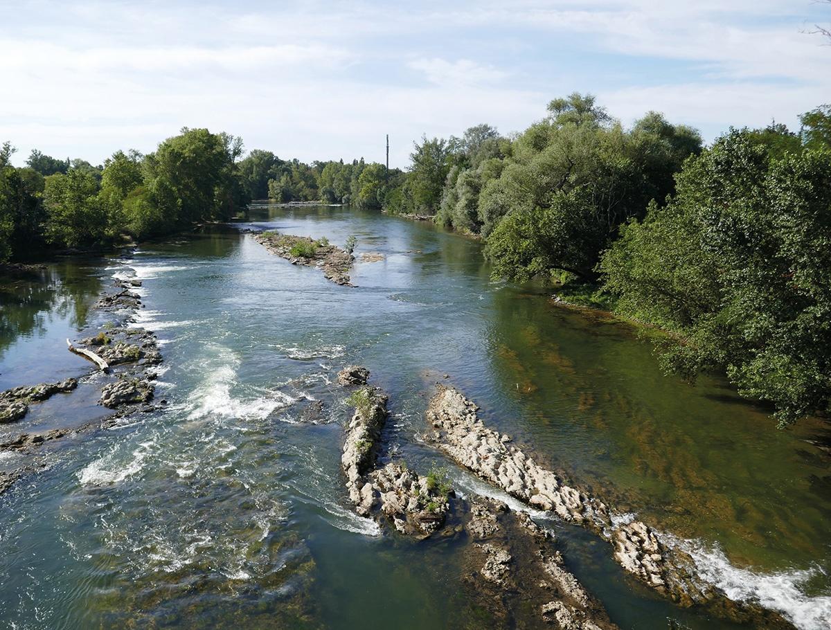 L'Ariège et sa ripisylve