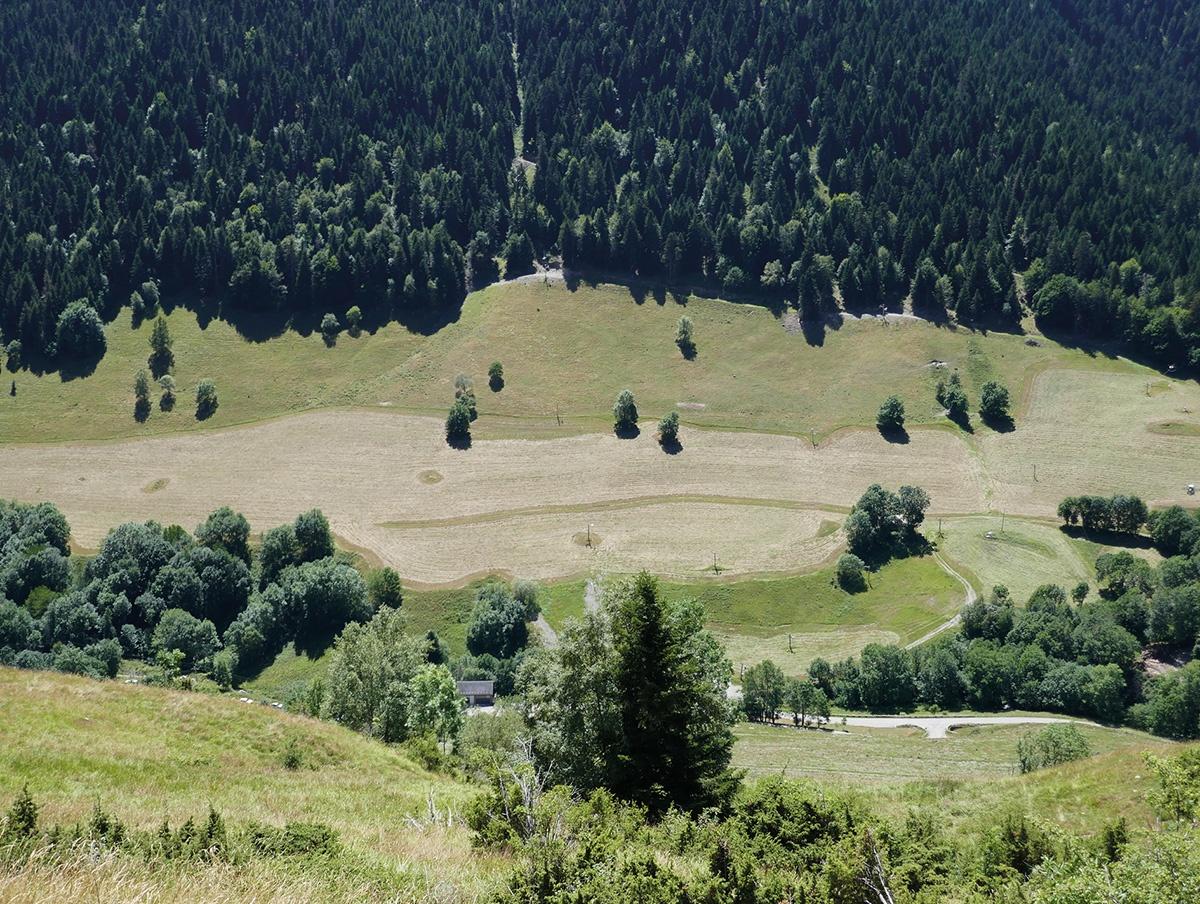 Une prairie de fauche en montagne, Bourg-d'Oueil